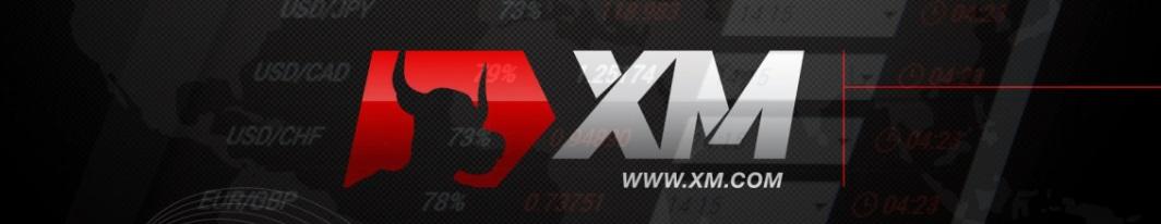 酒井さんのブログにはFXの広告が張られる